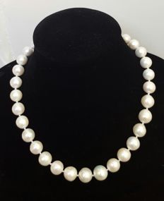 925 silver. Necklace composed of freshwater cultured XL pearls (13 to 11 mm), with silver brooch clasp - Length: 47 cm.