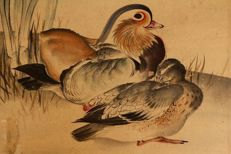 Scroll painting of a pair of Mandarin Ducks signed with 芦雪 (Rosetsu) - Japan - mid-19th century