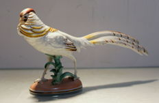 Rare porcelain bird signed Wien Augarten - model 1602