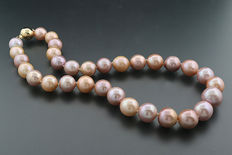 Extra large cultured pearl necklace, 12.0-15.0 mm, apricot - pink, 585 yellow gold -- no reserve price --