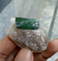 Attractive tourmaline crystal on quartz - 5 x 3 x 2cm - 204 carats