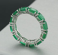 Memory ring with 12 emeralds totalling 4.80 ct, 750 white gold – ring width: 55 --No Reserve!--