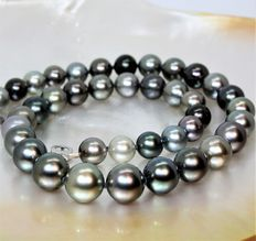 Necklace made of cultured Tahitian pearls, Ø 9.2-12.1 mm