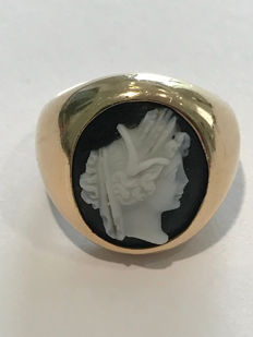 Chevalier ring with sardonic cameo