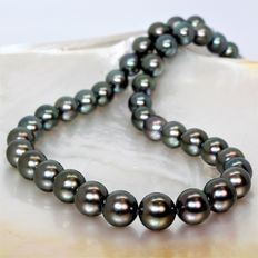 Necklace of round cultured Tahitian pearls, Ø 10.3 mm x 12.5 mm