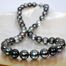 Necklace made of multicoloured round cultured Tahitian pearls, Ø 8.5 x 11.1 mm - 925 silver clasp