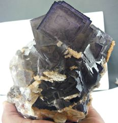 Huge purplish blue Cubic Fluorite Specimen - 145 x 136 x 103mm - 2424 g