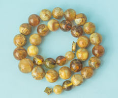 Baltic Amber necklace butterscotch & egg yolk yellow colour, weight: 73 gram
