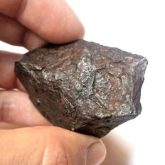 Beautiful Canyon del Diablo Meteorite. 140gr