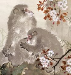 'Monkey and baby under blossoming cherry tree'  - large detailed handpainted scroll painting, sealed and signed - Japan - first half 20th century