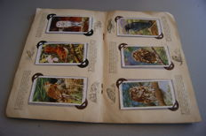 John Player & Sons - Lot with 4  Picture Cards albums Wildlife, Birds & Fishes - 1930/1933