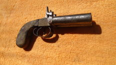 Heavy calibre muzzleloader two barrels. FRANCE