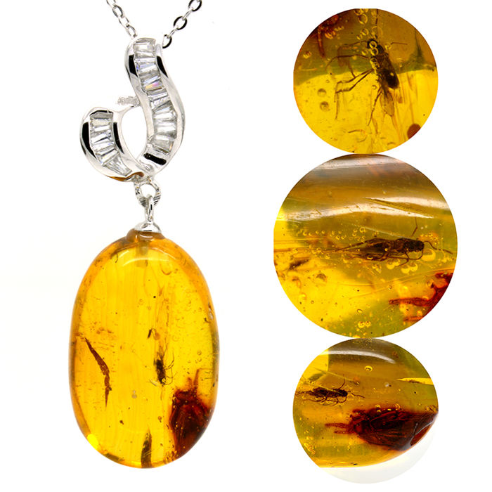 Pendant with necklace of 925 silver and amber with various insects - No Reserve Price