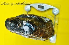 Sumatran Amber from historical ship wreckage - 22 x 13 x 26 cm -7,8 kg