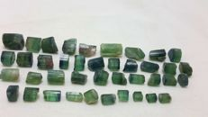 Watermelon indicolite blue and green tourmaline lot - 103 ct.