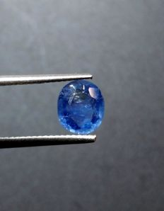 Sapphire - 1.95 Carats - No Reserve Price