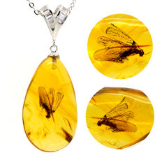 925 Silver necklace and amber pendant with one winged ant - no reserve price