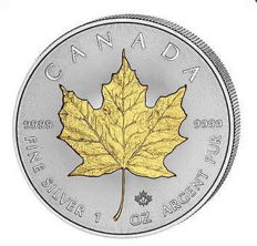 Canada – 5 dollars 2017 'Maple Leaf' embellished with 24 kt gold  – 1 oz silver