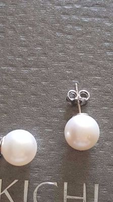 Pair of earrings – 18 kt white gold with white pearls measuring 8.0-8.5 mm.