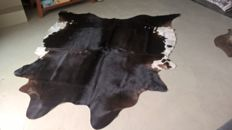 Extra large black and white Cow hide - Bos taurus - 205 x 230cm