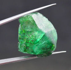 Beautiful Translucent Emerald AAA Certified Brazil Untreated  - 27,80 x 24,83 x 17,08 mm - 96,95 Ct