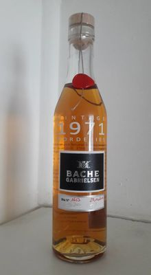 1971 Bache Gabrielsen Vintage Cognac Borderies - 1 bottle 35cl