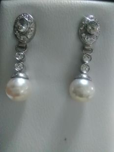 Earrings in 18 kt white gold with Akoya pearl and zirconias