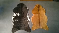 2 cows skins in fine condition. Cowhide.