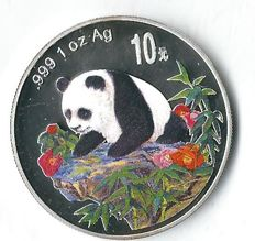 China Panda 1999 colour baby playing in the water rare type 31.1 grams fine silver