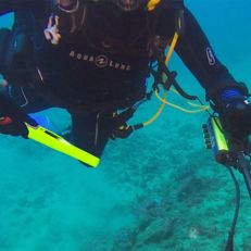 Deteknix Diver pointer. underwater diving till 30 metres, Pulse Induction pin-pointer