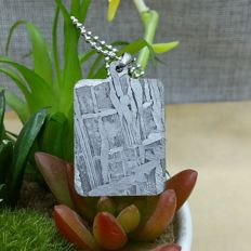 Seymchan Meteorite Pendant - clear Widmanstatten pattern - with stainless steel chain - 37.16 x 25 x 2.09mm - 12.56gm