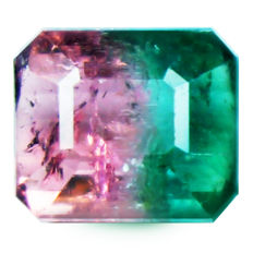 "Tourmaline bi-color  (""watermelon"" color) - 3,39 ct"