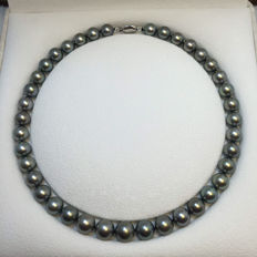 Tahiti pearl necklace, 10-11.7 mm in diam. With 14 karat gold buckle.