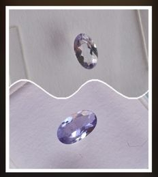 Lot of 2 tanzanites – 0.22/0.21 ct