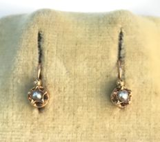 Small pair of starry sleepers in 18 kt rose gold decorated with fine pearls - No reserve price.
