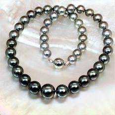 Stunning natural colour gradient necklace – Tahitian pearls Ø from 8.5 to 12.3 mm