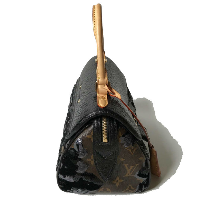 a83465a70173 Louis Vuitton Carrousel Handbag - Limited Edition 2010 11 - Catawiki