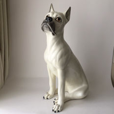 Original large Italian vintage ceramic sculpture of a boxer dog with very loyal eyes. - 71cm