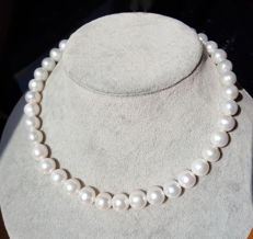 Cultured Pearl Necklace,Pearl Size: 10.5-11.5 mm