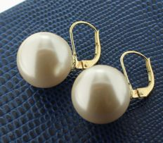 14 kt Gold earrings set with a pearl of 14 mm
