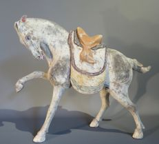 Prancing horse with removable saddle, Tang dynasty, with TL test - 33 X 39cm