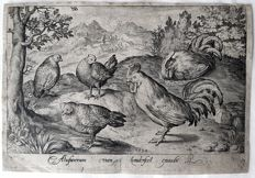 Nicolaes de Bruyn  (Antwerp, 1571 - Rotterdam, 1656) Published by Assuerus van Londerseel (1572–1635) - Three Hens and two Roosters - 1594