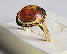 18 kt yellow gold ring with cabochon button of amber from the Baltic Sea – Size 20