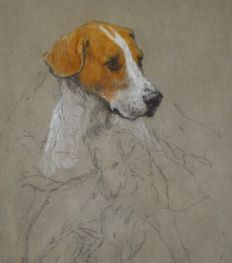 Attrib. Thomas Blinks. (1860-1912) - Portrait of a foxhound.