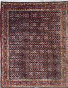 Persian carpet, extremely durable Afshar Bidjar, 250 x 200 cm.