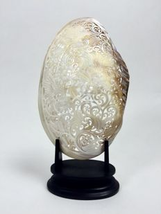 Large engraved mother of pearl shell - Bali - Indonesia