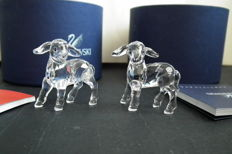 Swarovski - 2 x Lambs clear, complete with box and certificate, new.