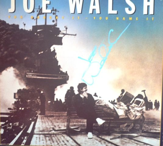 Joe Walsh - You Bought It - You Name It US LP