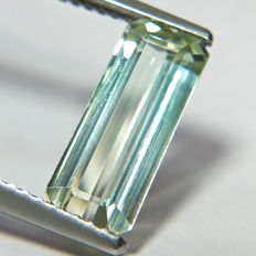 Bi Color Tourmaline - 2.37 ct