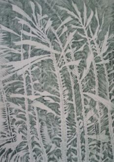 5 prints by Albrecht Leistner (1887-1950) - Eisblumen - Frost patterns - 1926